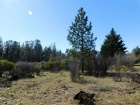 Lot #4 Crater Dr Listing Photo