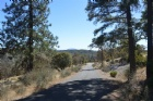 30049 Shingletown Ridge Rd.   Listing Photo