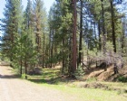 Anderson Ranch Rd Listing Photo