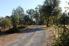 5 acres Dynasty Lane Listing Photo