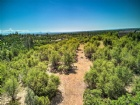 Jones Valley Trl Listing Photo