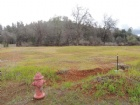 War Admiral Way 4.99 Acres Listing Photo