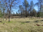 42 acres Ash Creek Road Listing Photo