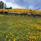 Jones Valley Trail Listing Photo