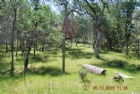 18 acres Wengler Hill Rd Listing Photo