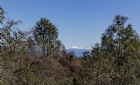 4507 Shannon Place Listing Photo